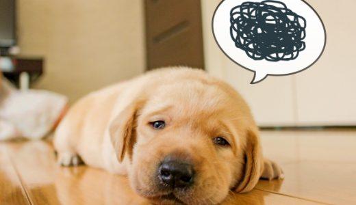 4日以上便秘が続くプロの赤ちゃんが教える マッサージ、ビフィズス菌と綿棒